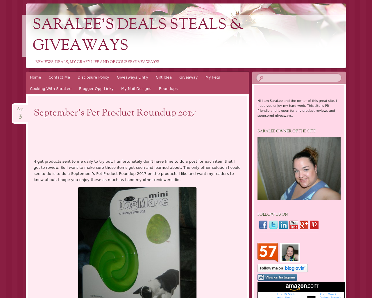 Saralee's-Deals-Steals-And-Giveaways-Advertising-Reviews-Pricing