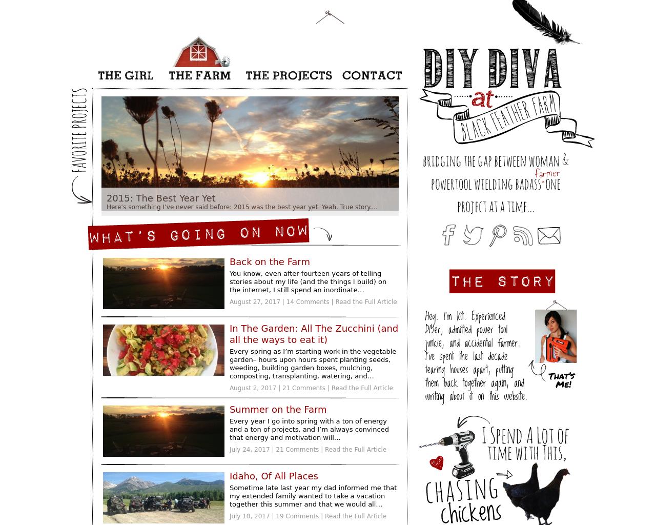 DIY-Diva-Advertising-Reviews-Pricing
