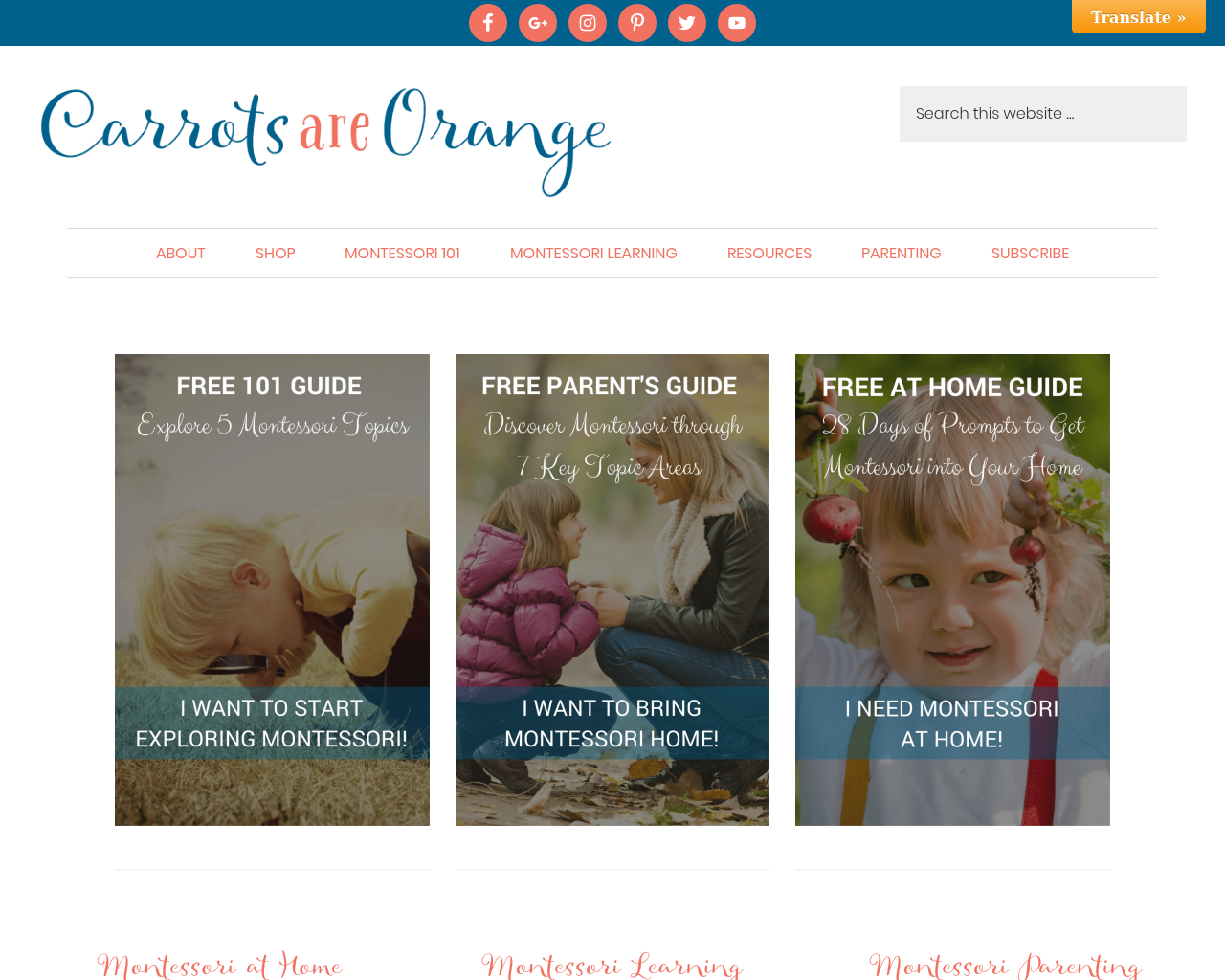 Carrots-Are-Orange-Advertising-Reviews-Pricing