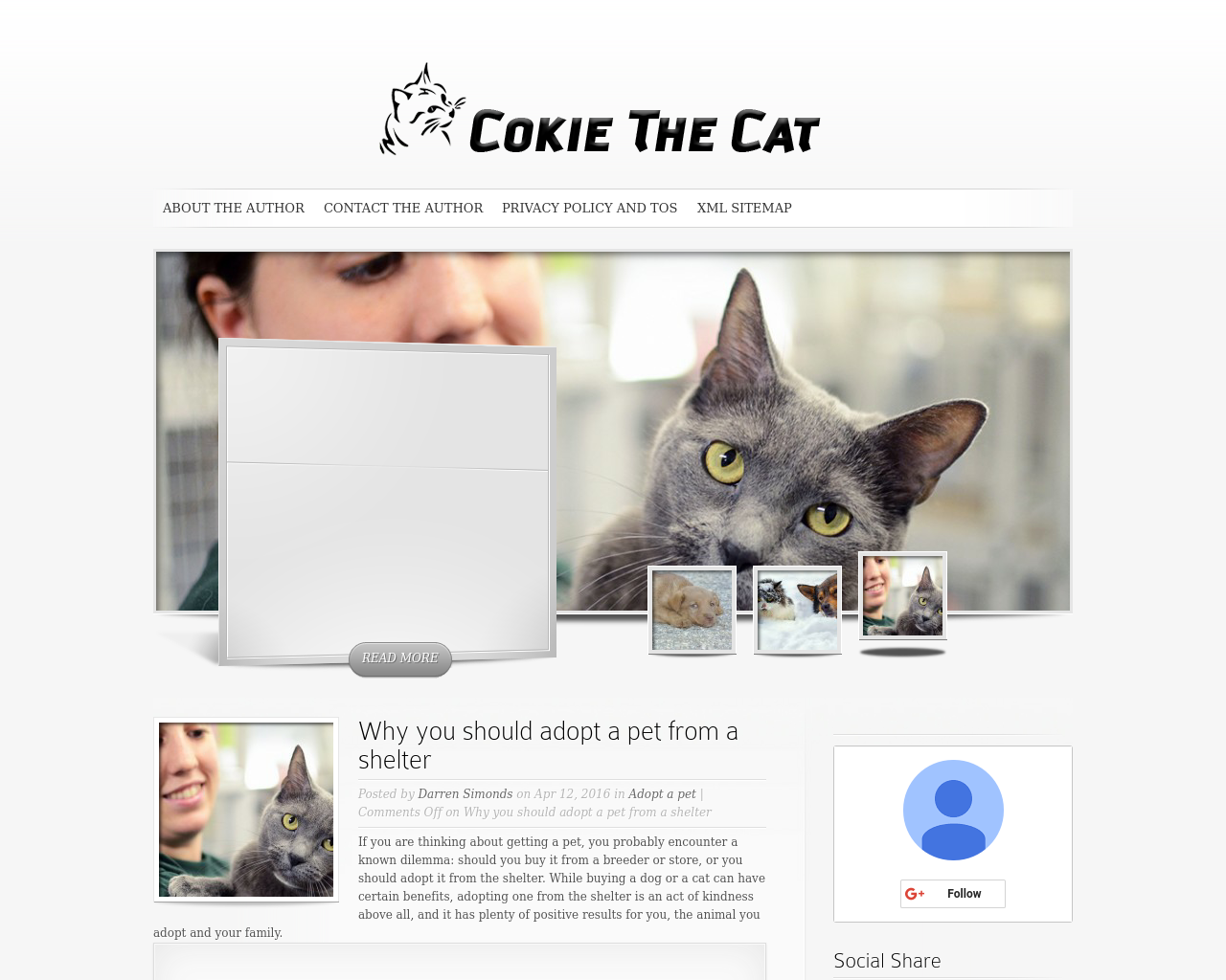 Cokie-The-Cat-Advertising-Reviews-Pricing