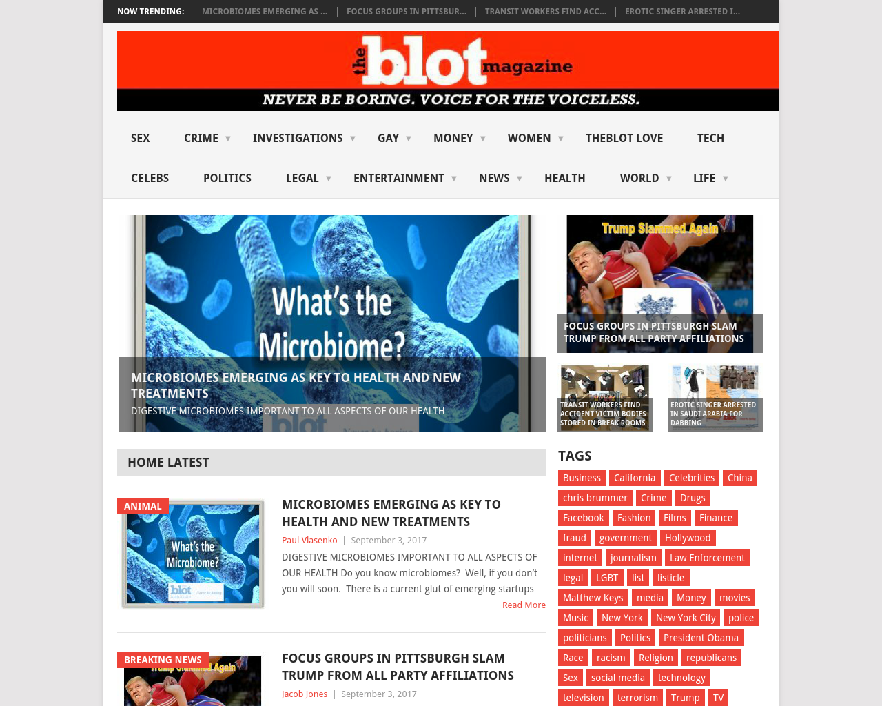 The-Blot-Magazine-Advertising-Reviews-Pricing