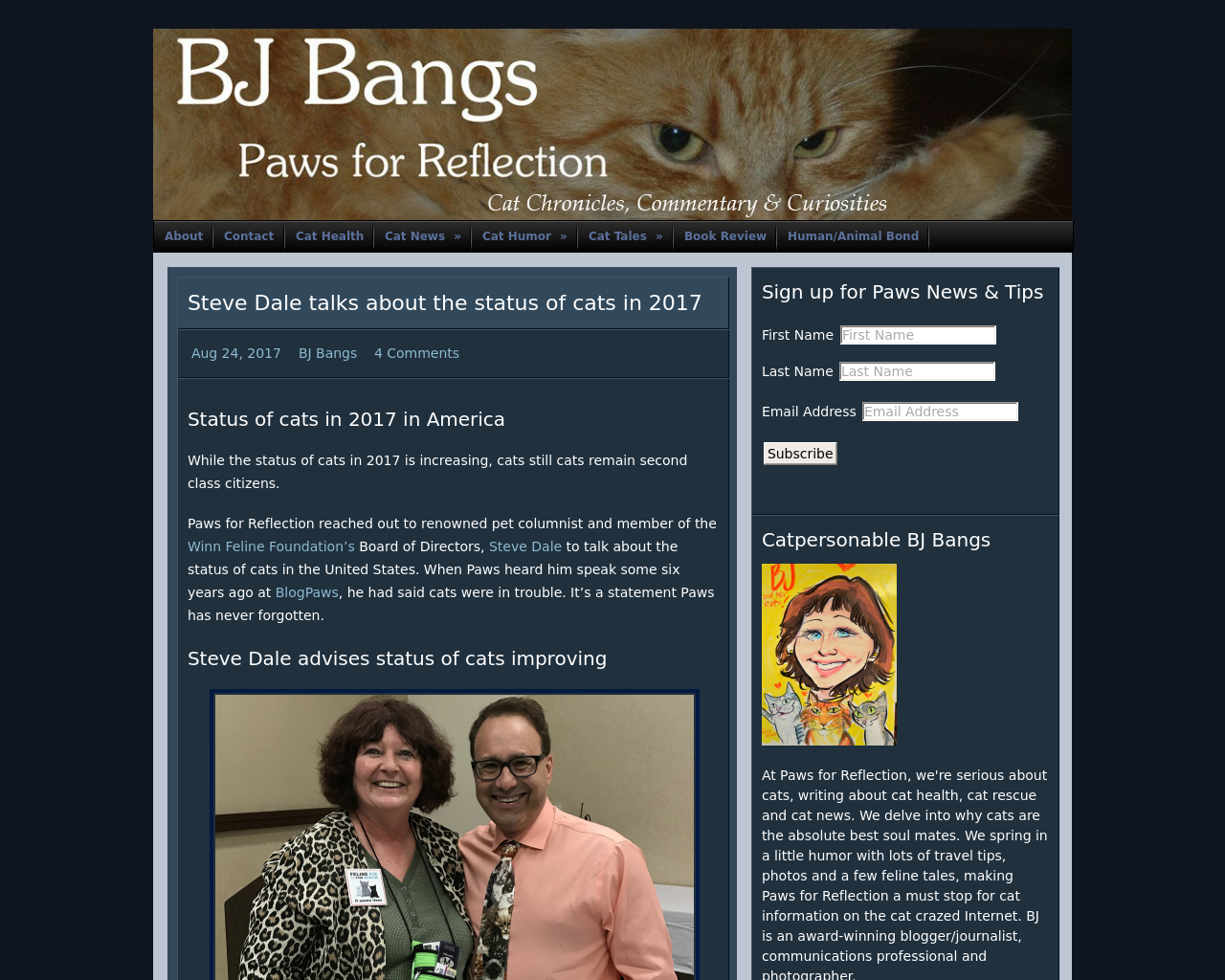 BJ-Bangs-Paws-for-Reflection-Advertising-Reviews-Pricing