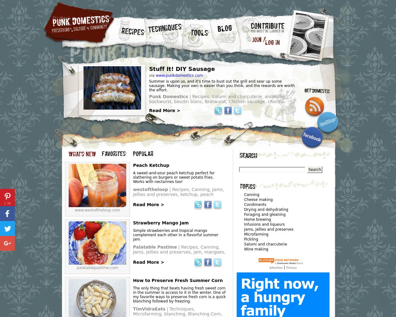 Punk-Domestics-Advertising-Reviews-Pricing