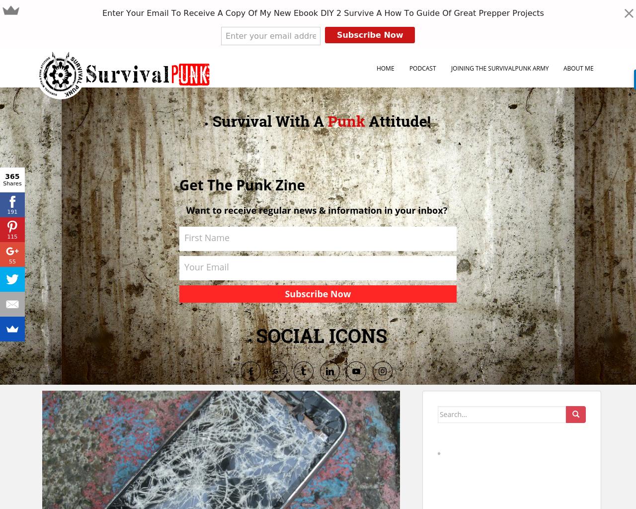 Survival-Punk-Advertising-Reviews-Pricing