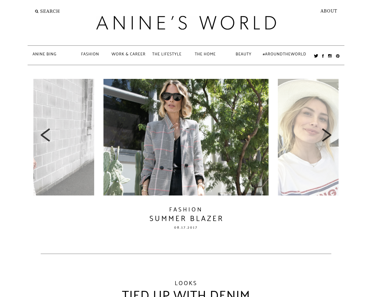 Anine's-World-Advertising-Reviews-Pricing