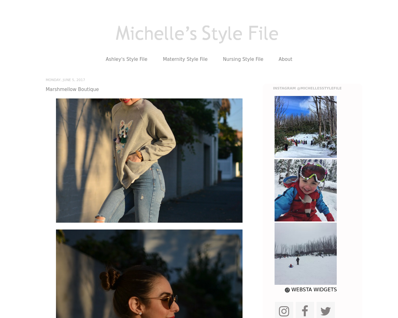 Michelle's-Style-File-Advertising-Reviews-Pricing