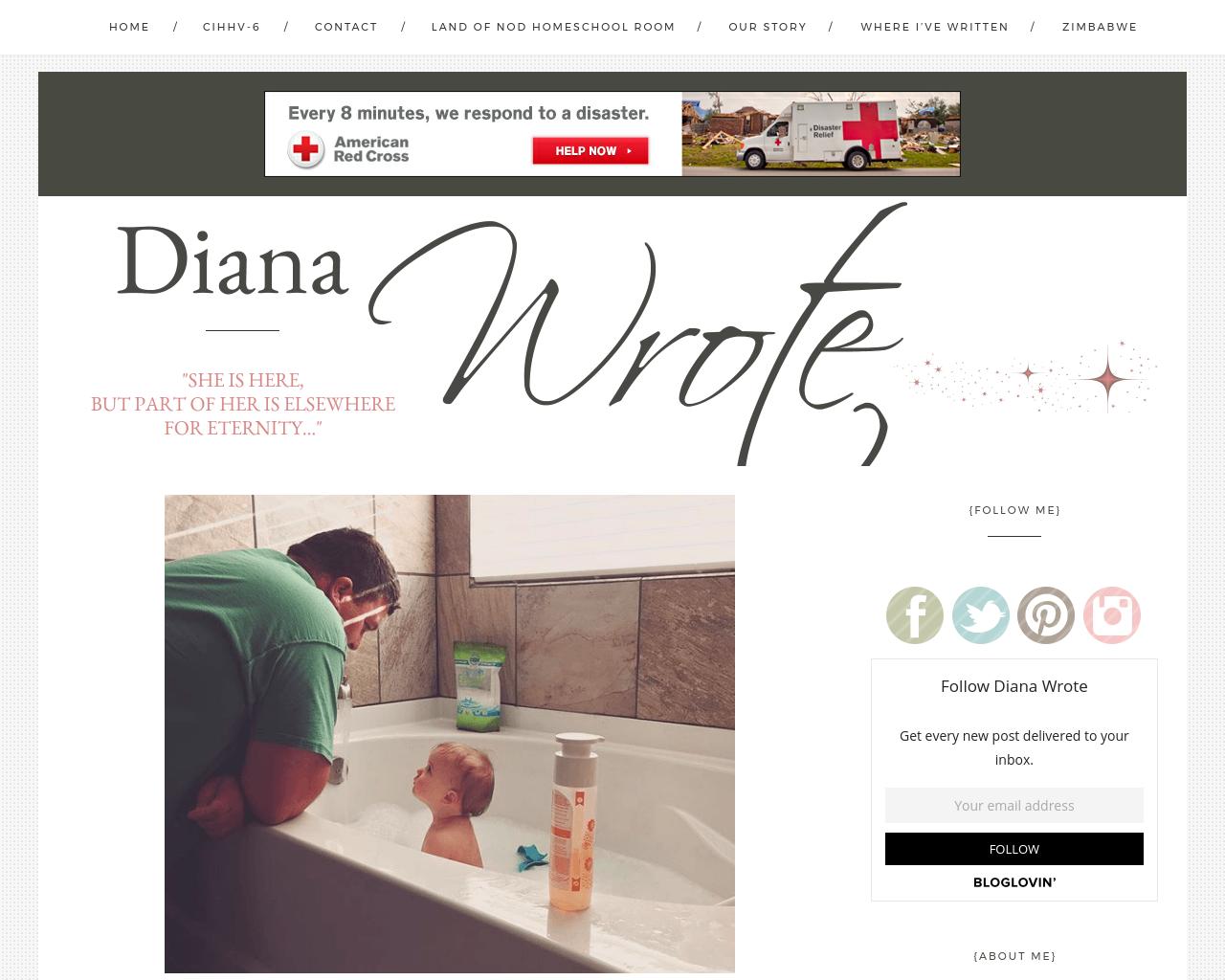 Diana-Wrote-Advertising-Reviews-Pricing