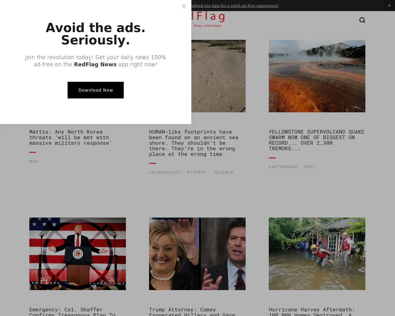 Red-Flag-Advertising-Reviews-Pricing