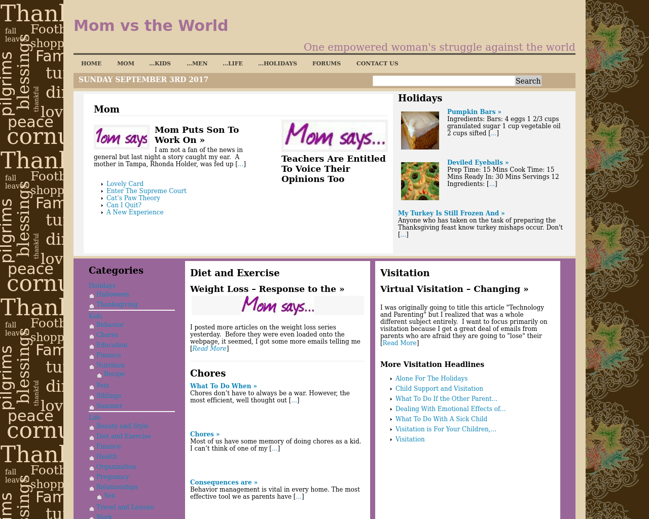 Mom-Vs.-The-World-Advertising-Reviews-Pricing