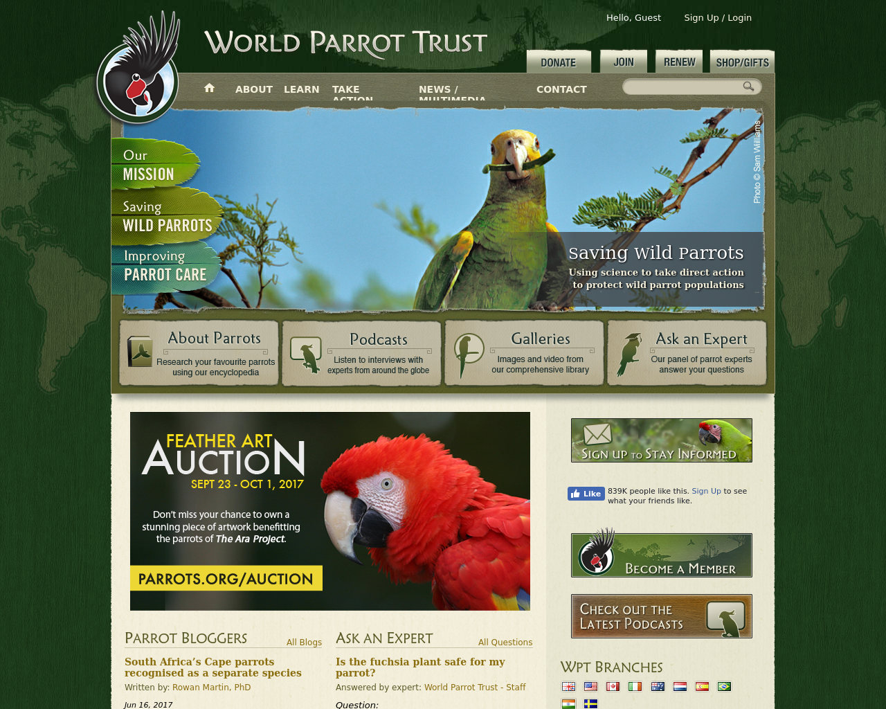 World-Parrot-Trust-Advertising-Reviews-Pricing
