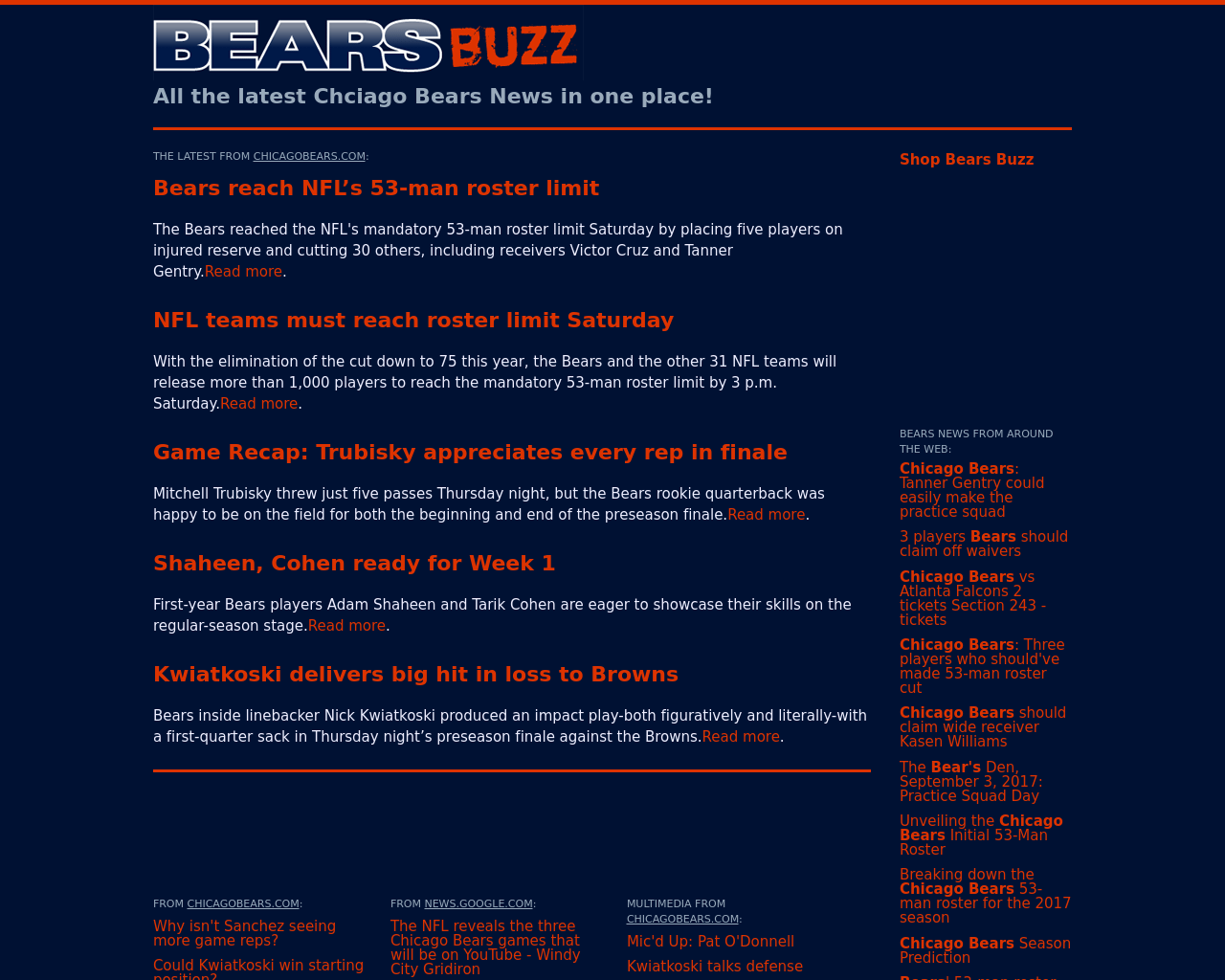 Bears-Buzz-Advertising-Reviews-Pricing