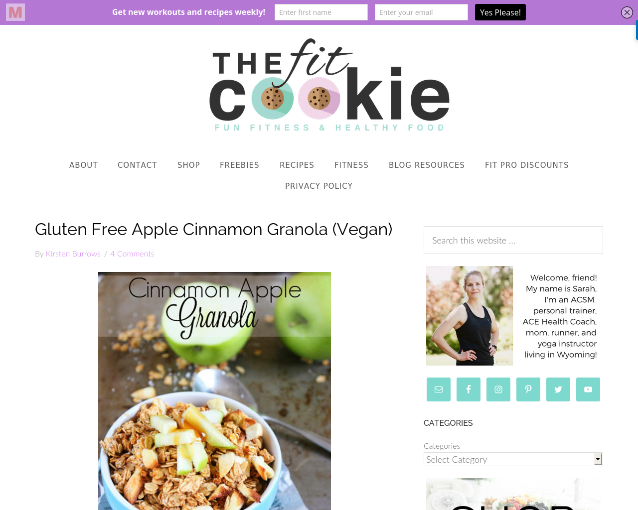 The-Fit-Cookie-Advertising-Reviews-Pricing