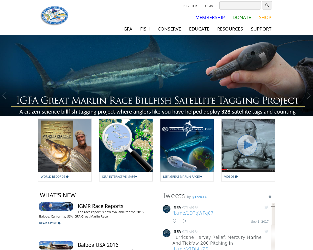Igfa.org-Advertising-Reviews-Pricing
