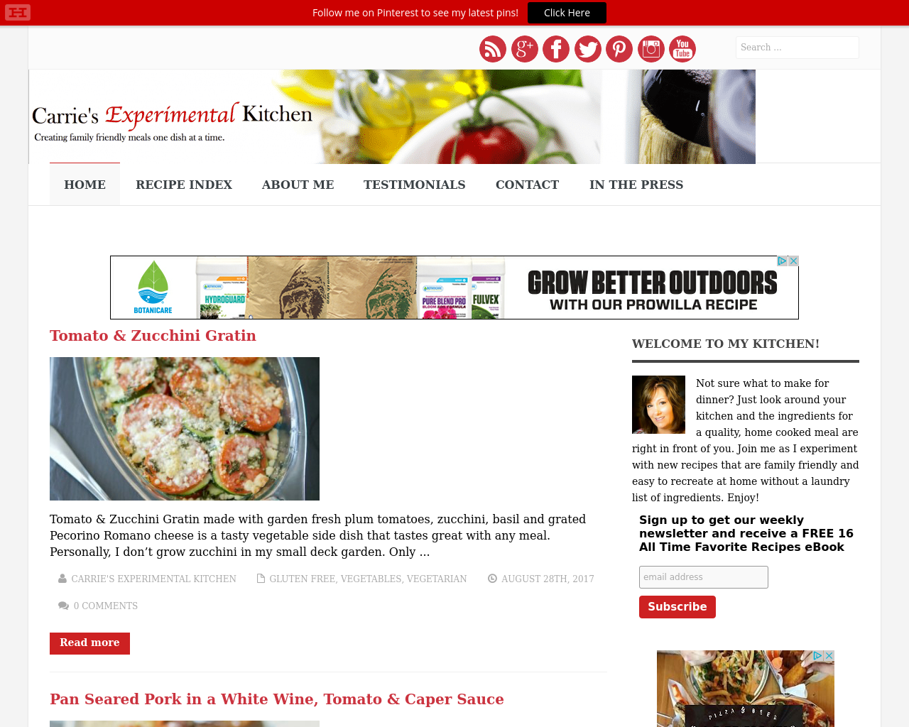 Carrie's-Experimental-Kitchen-Advertising-Reviews-Pricing