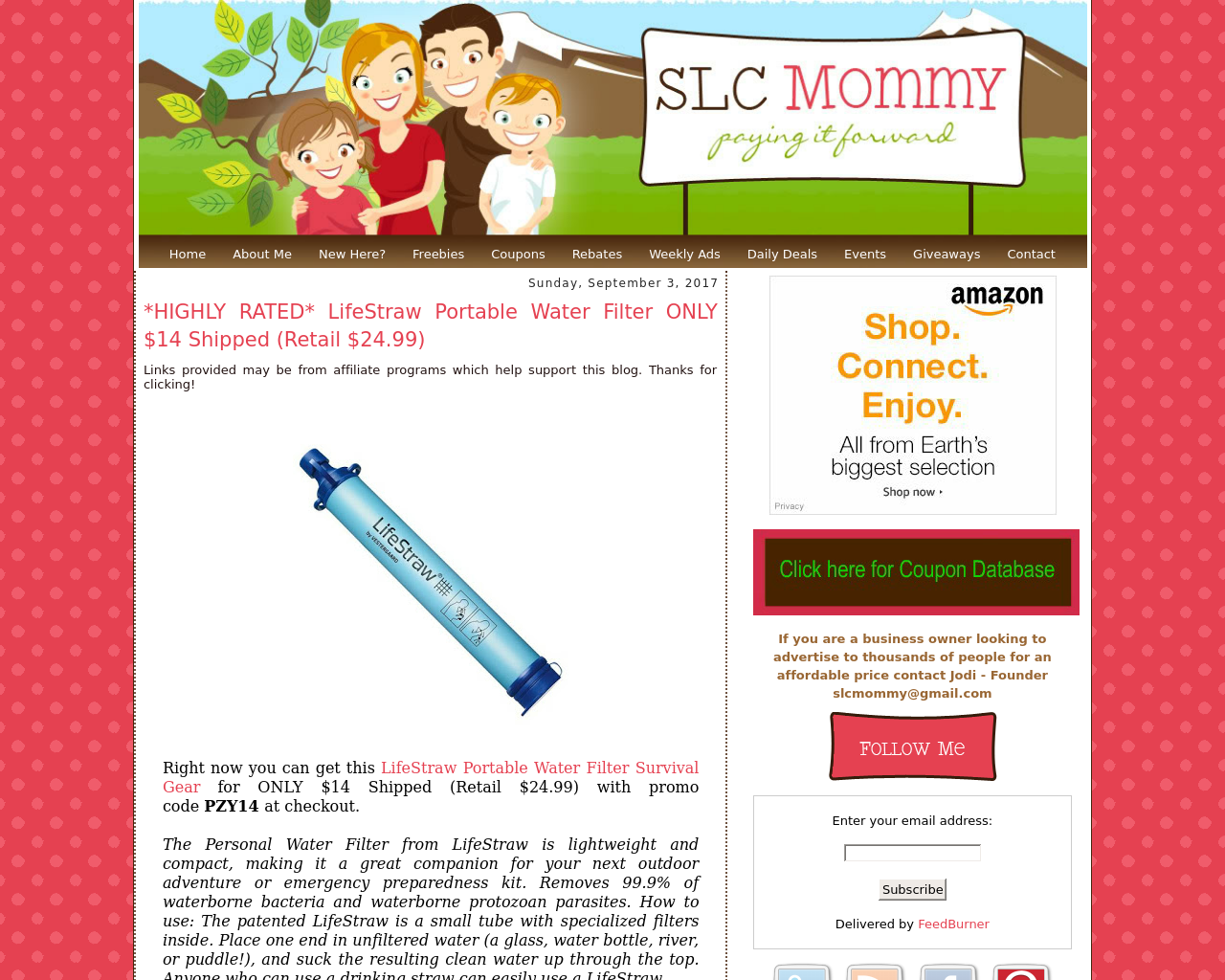 My-SLC-Mommy-Advertising-Reviews-Pricing