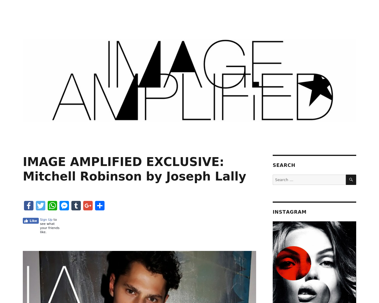 Image-Amplified-Advertising-Reviews-Pricing
