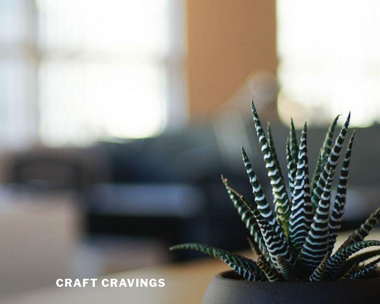Craft-Cravings-Advertising-Reviews-Pricing