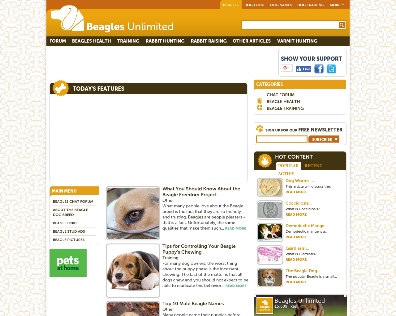 Beagles-Unlimited-Advertising-Reviews-Pricing