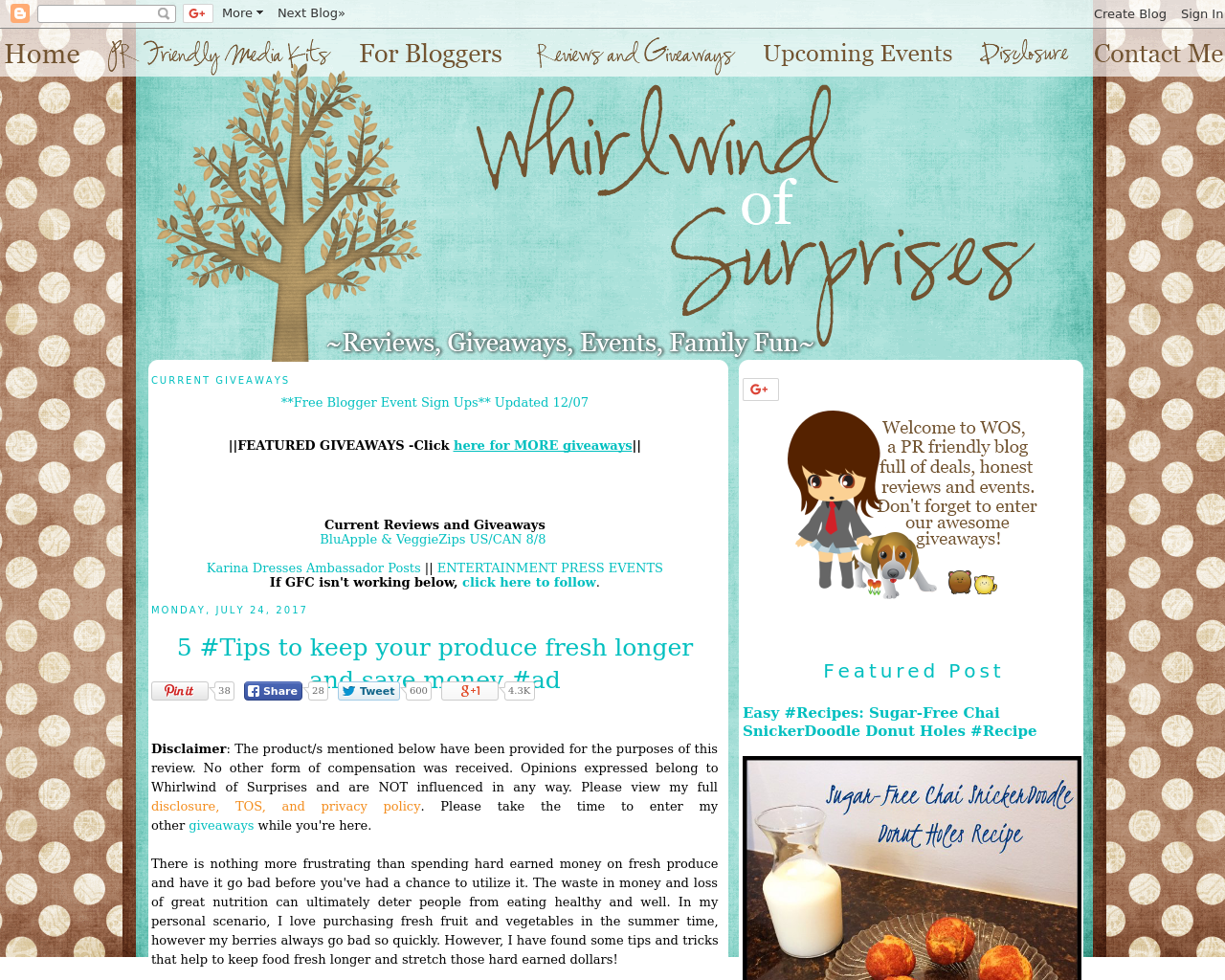 Whirlwind-Of-Surprises-Advertising-Reviews-Pricing