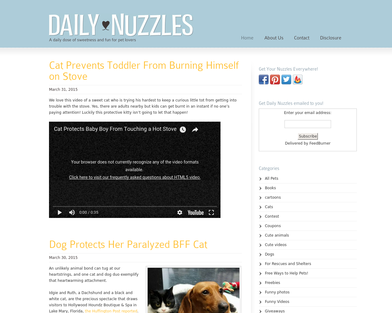 Daily-Nuzzles-Advertising-Reviews-Pricing
