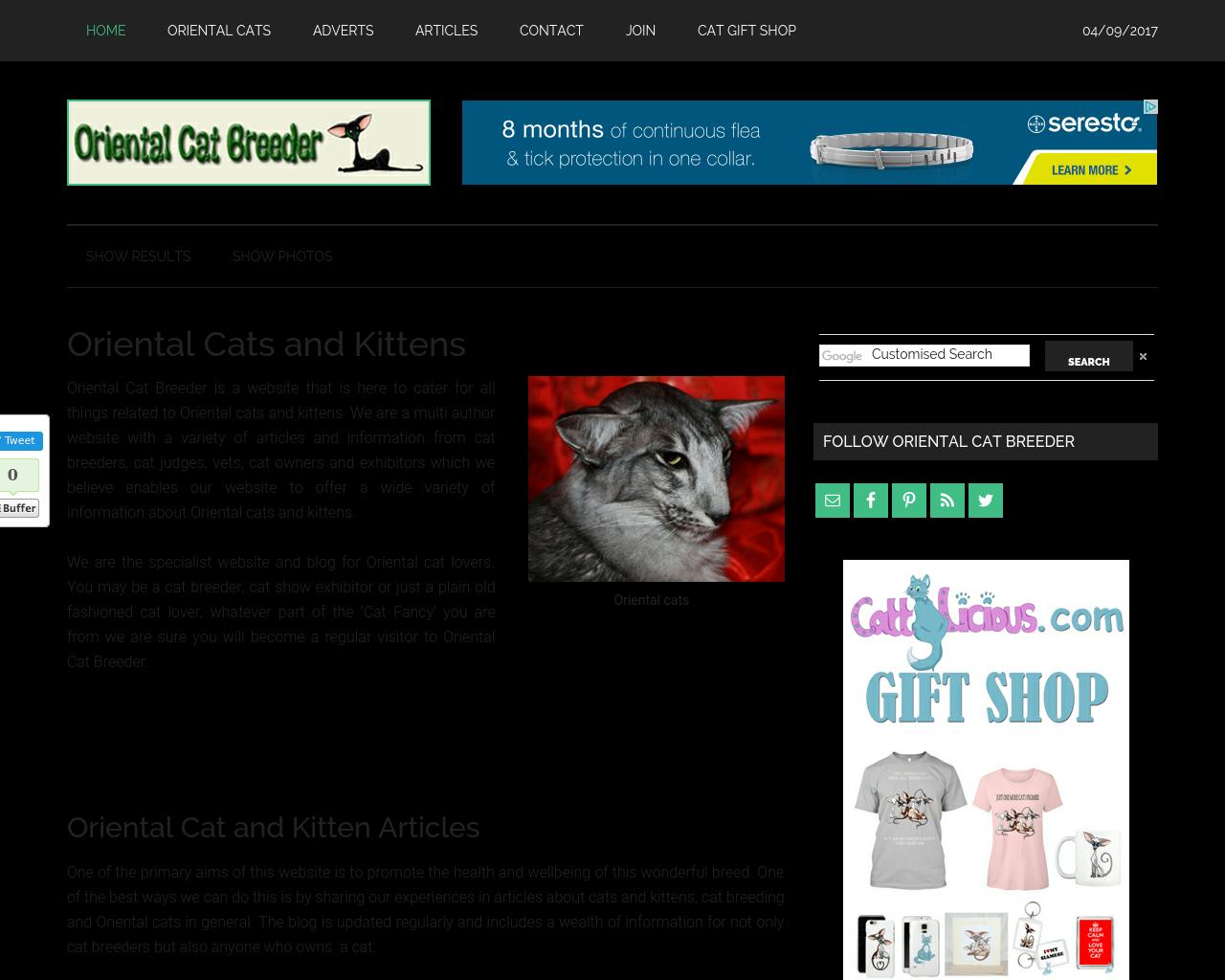 Oriental-Cat-Breeder-Advertising-Reviews-Pricing