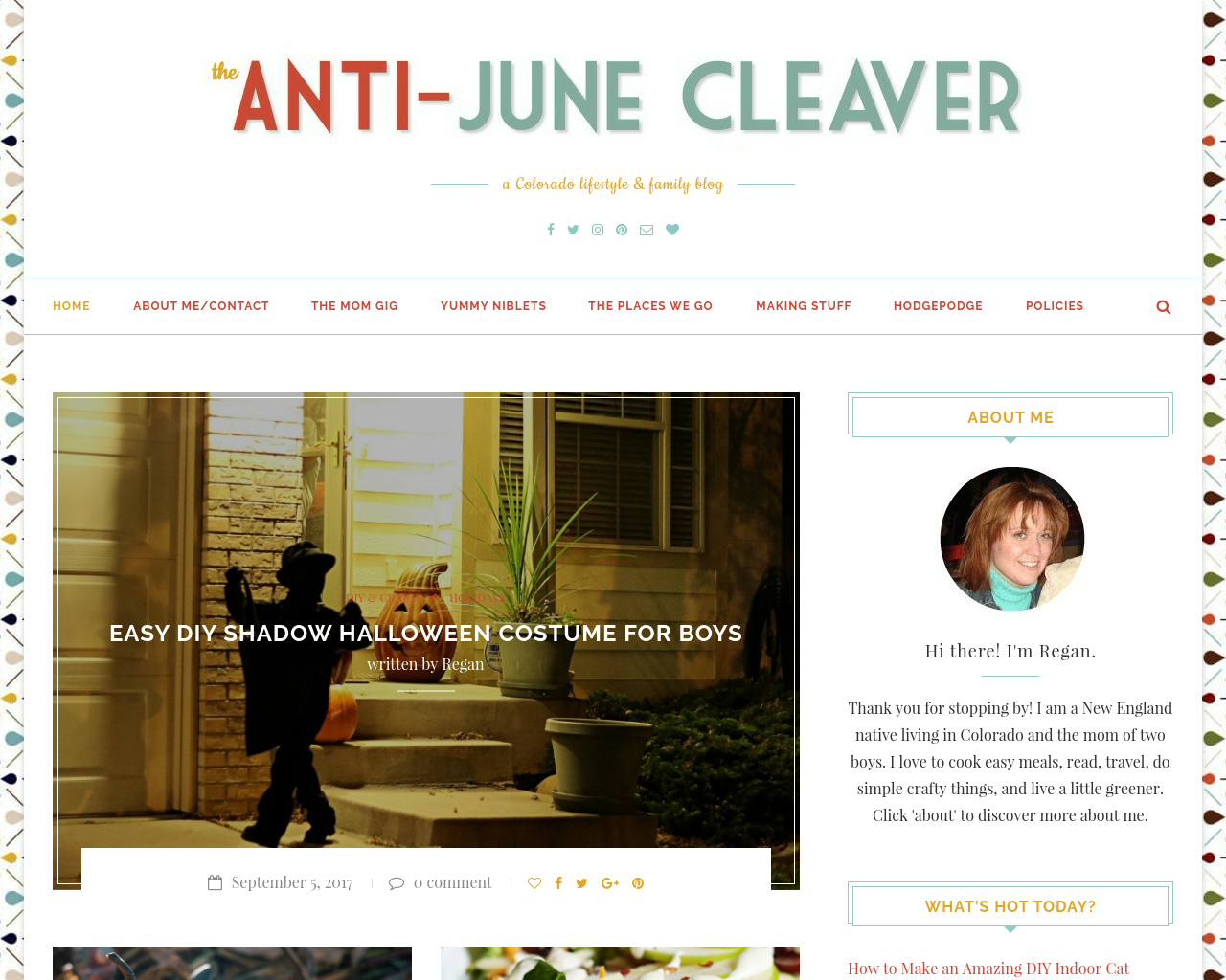 The-Anti-June-Cleaver-Advertising-Reviews-Pricing