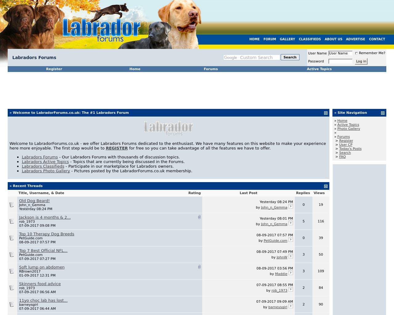 Labrador-Forums-Advertising-Reviews-Pricing