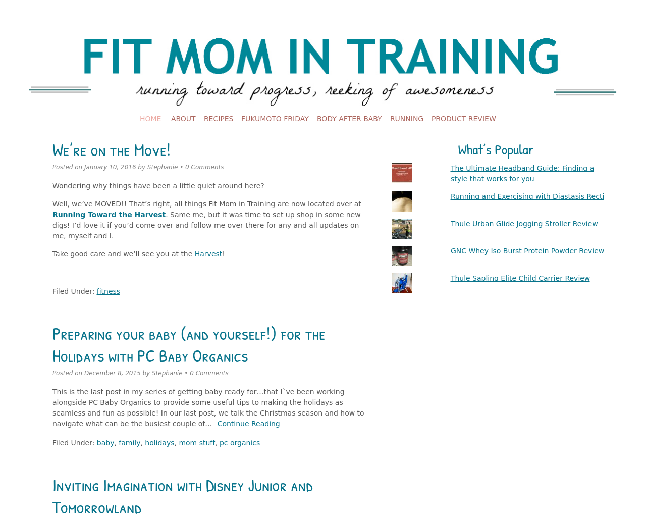 FIT-MOM-IN-TRAINING-Advertising-Reviews-Pricing