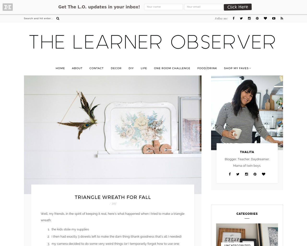 The-Learner-Observer-Advertising-Reviews-Pricing