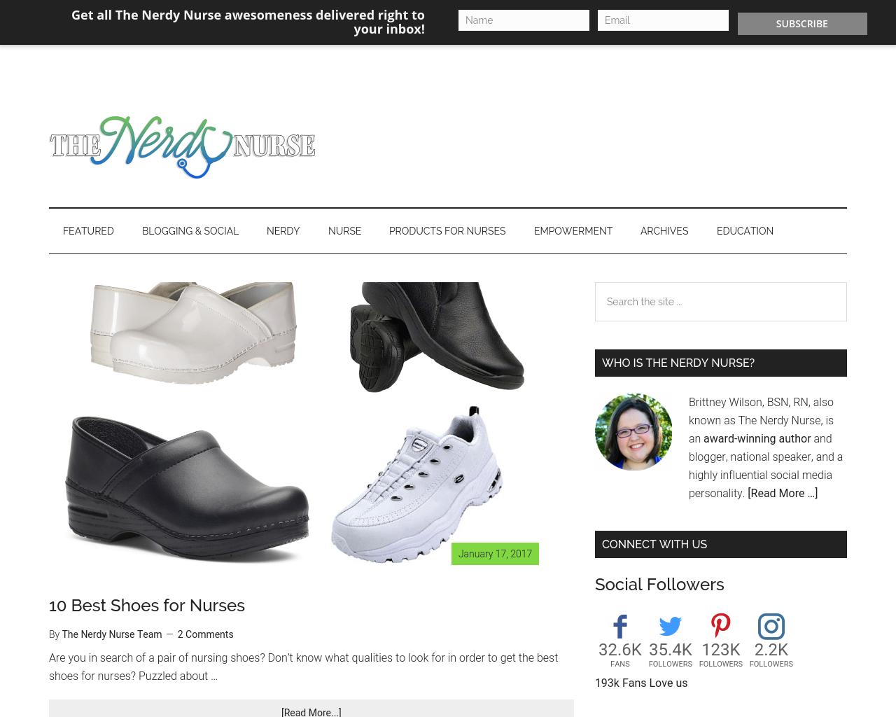 The-Nerdy-Nurse-Advertising-Reviews-Pricing