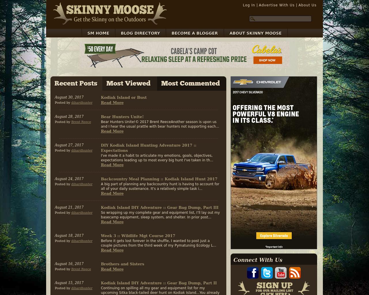 Skinny-Moose-Advertising-Reviews-Pricing