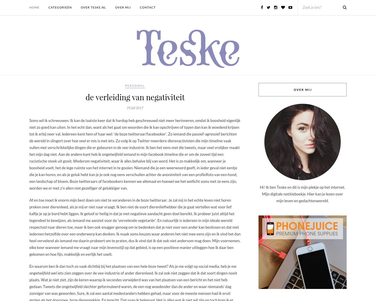 Teske-Advertising-Reviews-Pricing