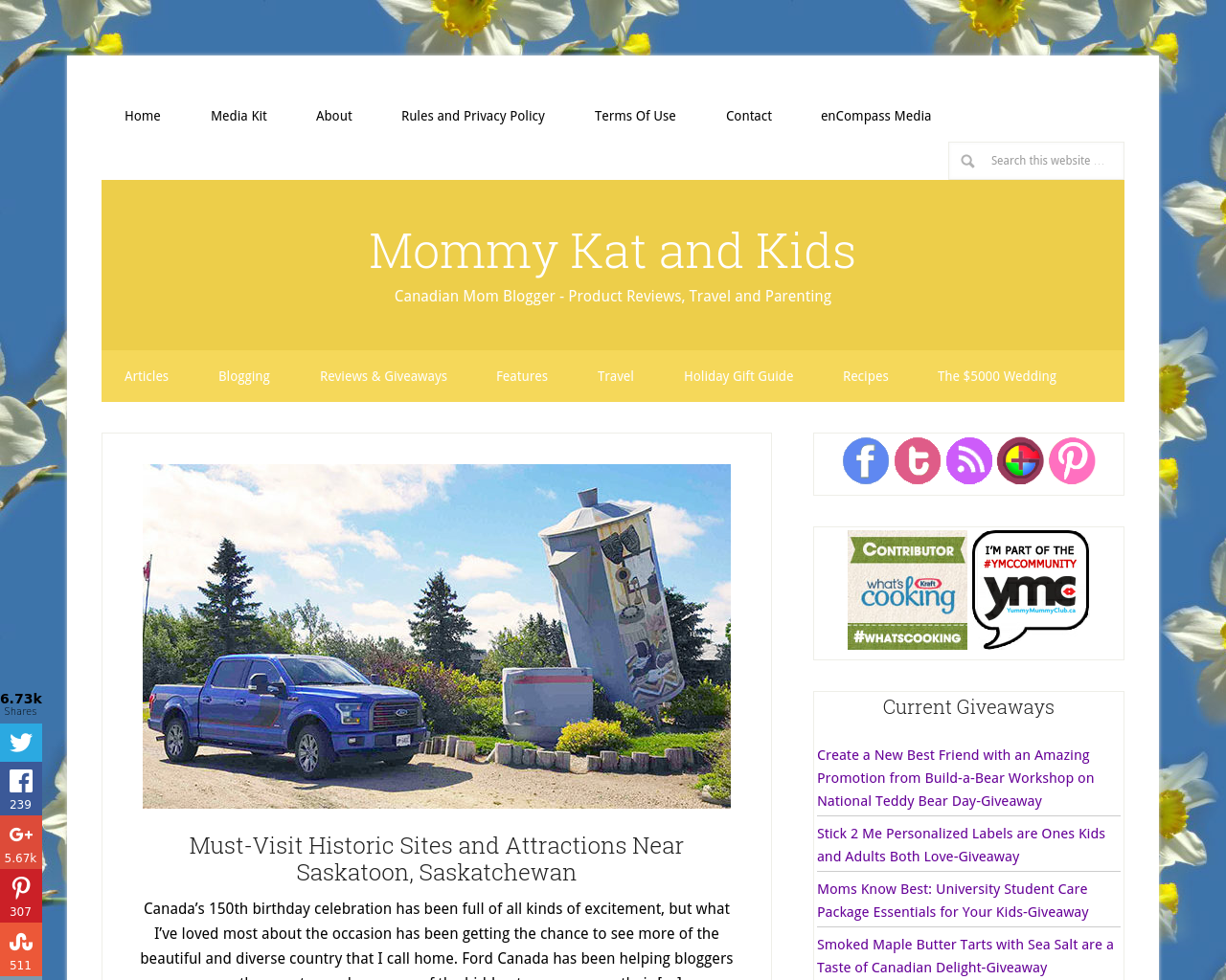 Mommy-Kat-and-Kids-Advertising-Reviews-Pricing