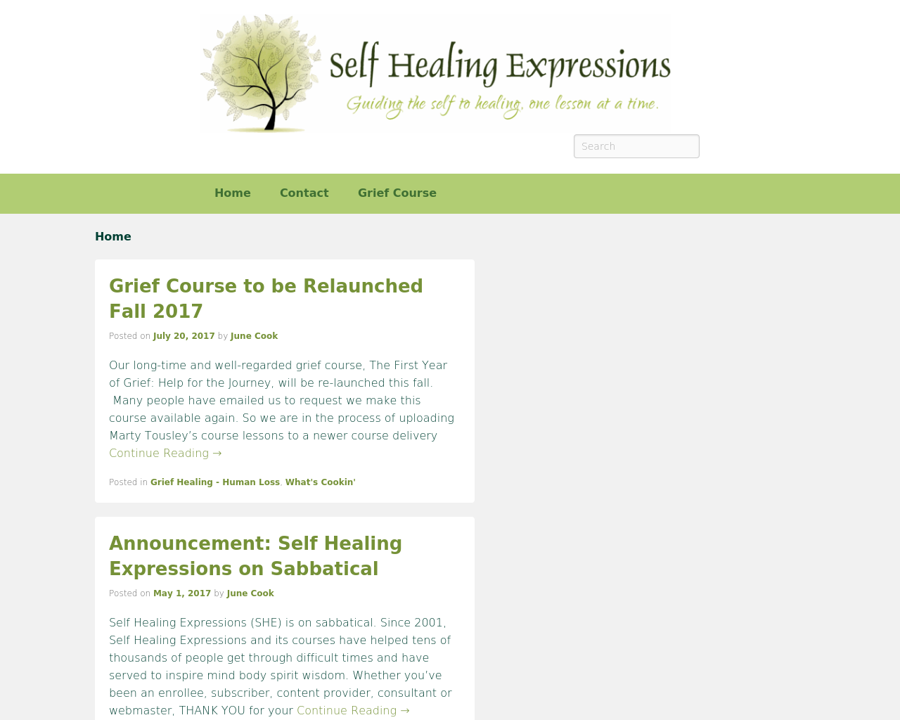 Self-Healing-Expressions-Advertising-Reviews-Pricing