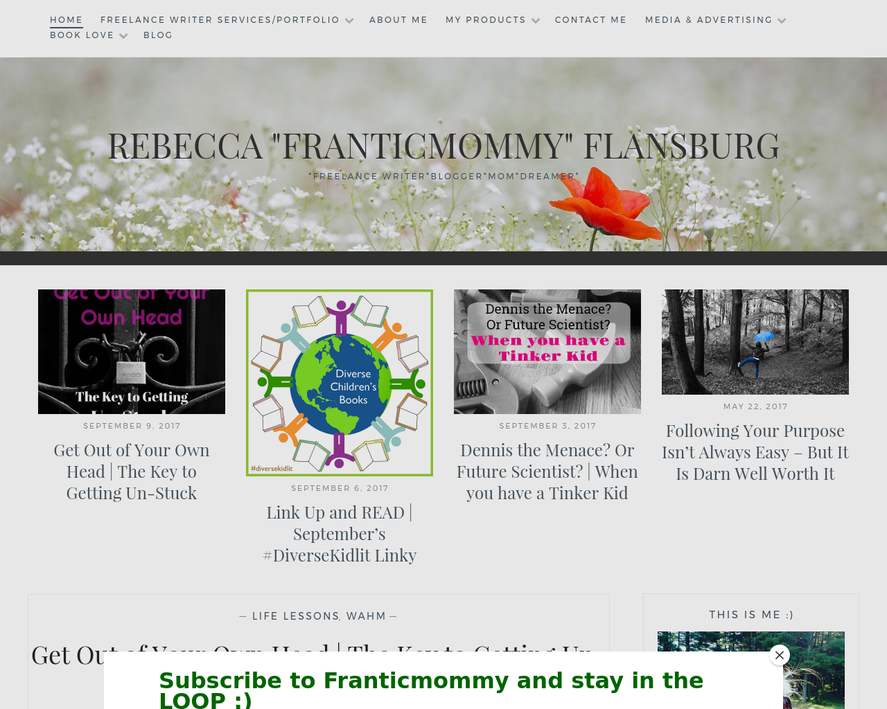 Frantic-Mommy-Advertising-Reviews-Pricing