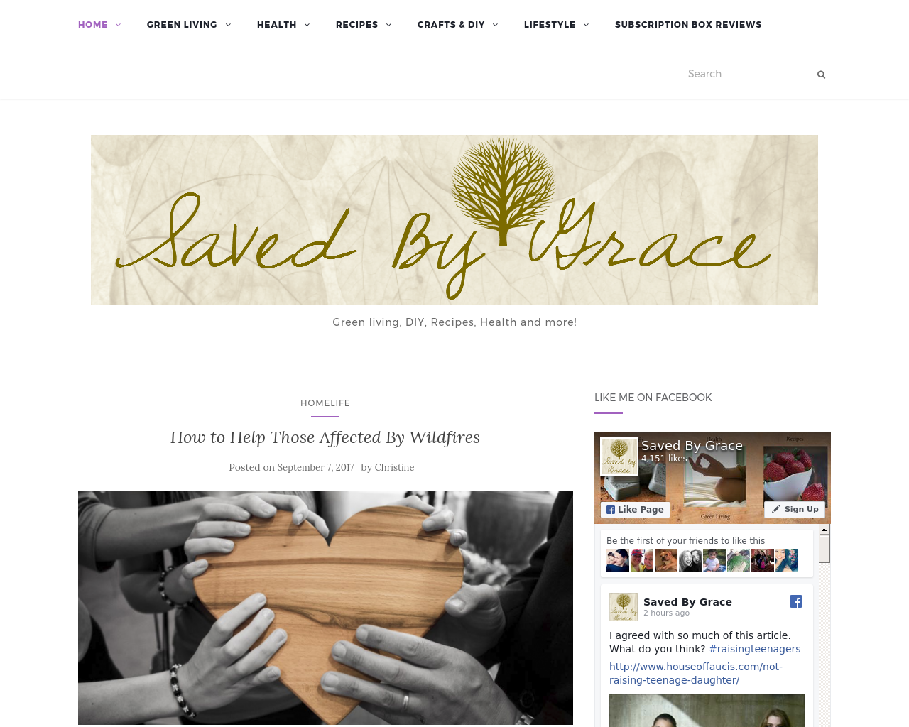 Saved-By-Grace-Blog-Advertising-Reviews-Pricing