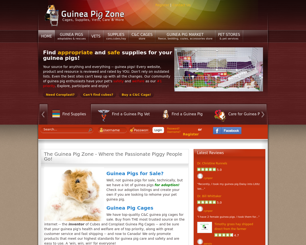 Guinea-Pig-Zone-Advertising-Reviews-Pricing