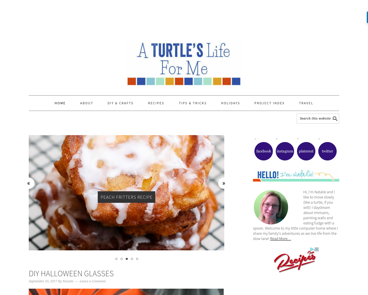 A-Turtle's-Life-for-Me-Advertising-Reviews-Pricing