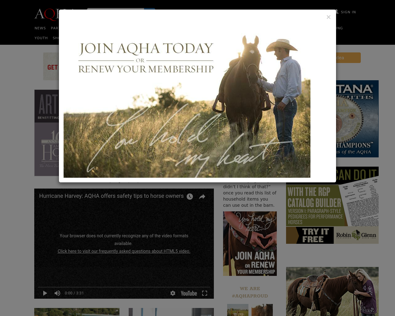 American-Quarter-Horse-Association-Advertising-Reviews-Pricing