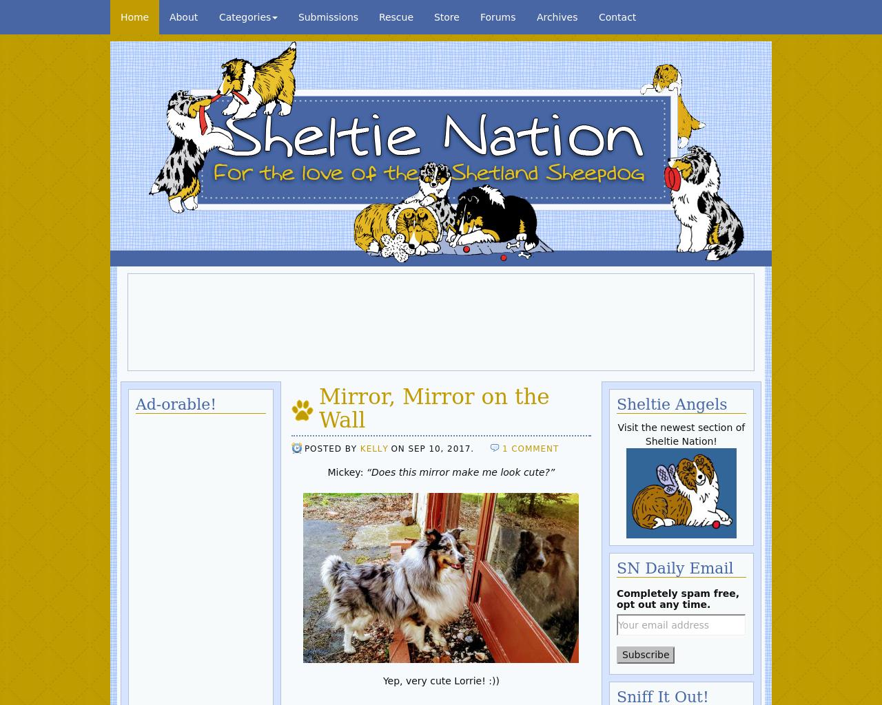 Sheltienation-Advertising-Reviews-Pricing