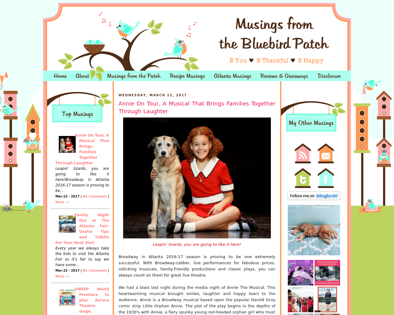 Musings-from-the-Bluebird-Patch-Advertising-Reviews-Pricing