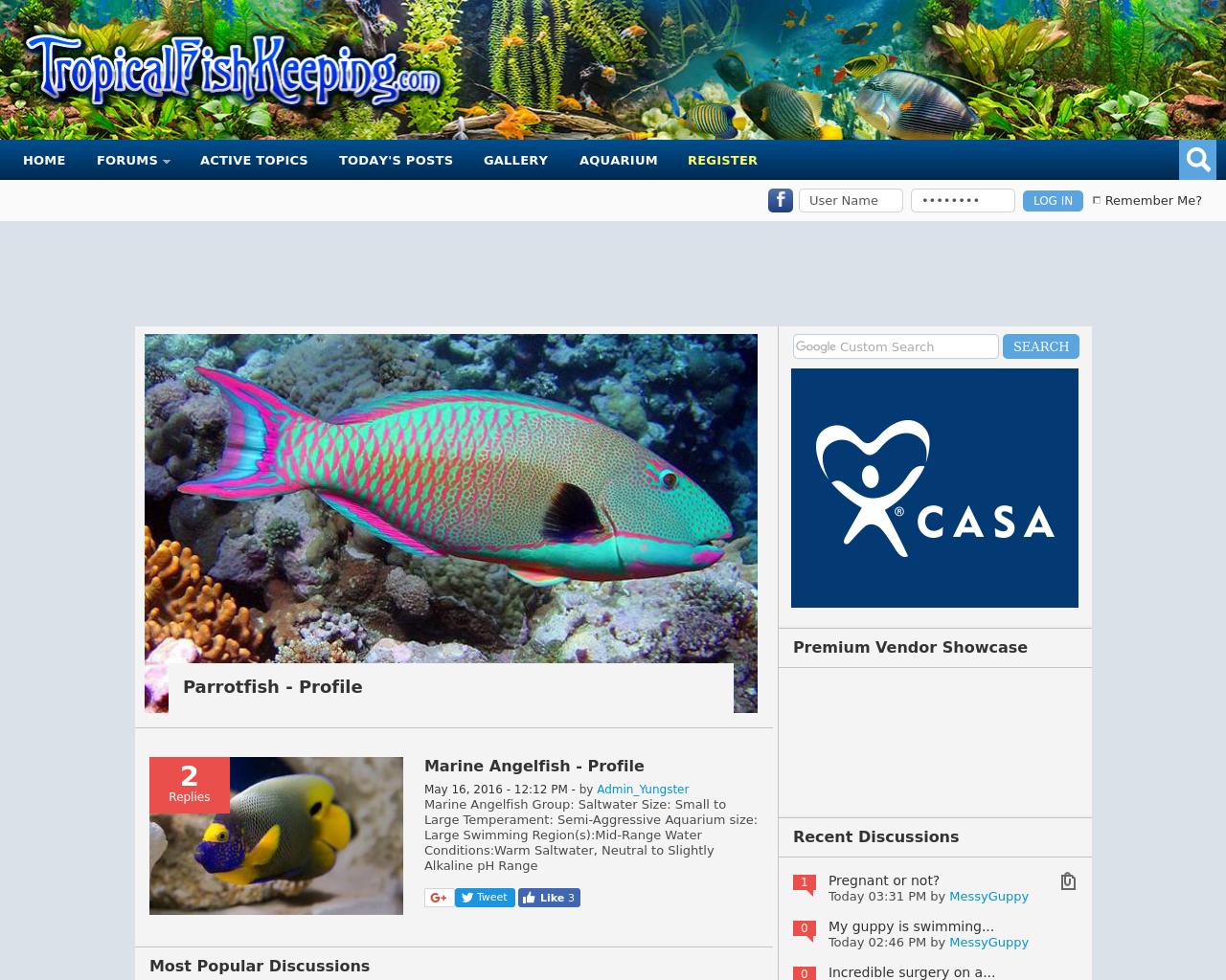 Tropical-Fish-Aquarium-Forum-Advertising-Reviews-Pricing