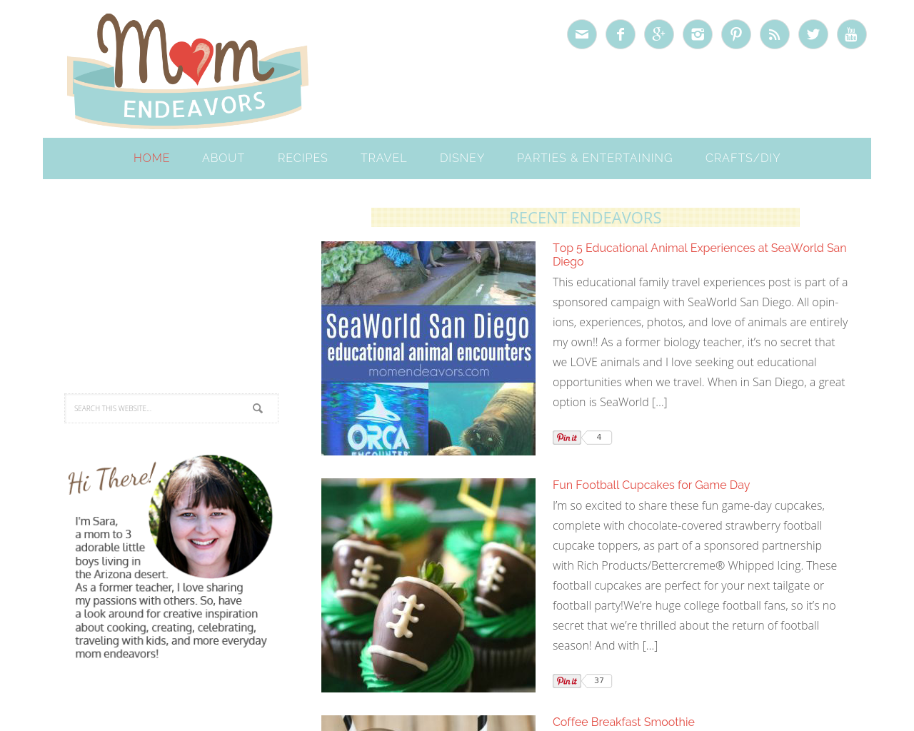 Mom-Endeavors-Advertising-Reviews-Pricing
