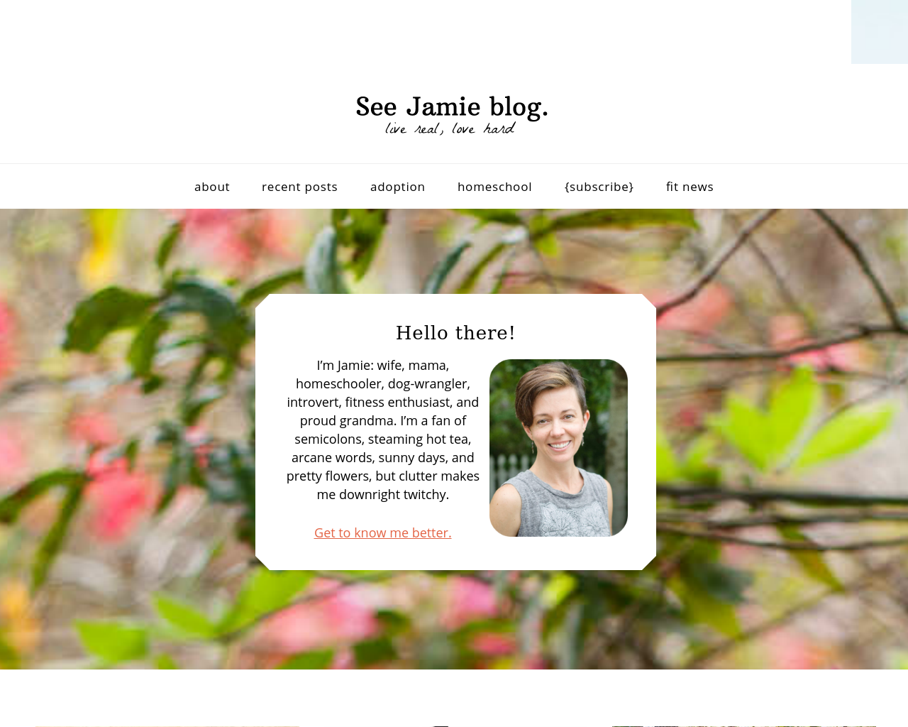 See-Jamie-Blog.-Advertising-Reviews-Pricing