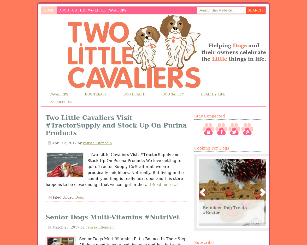 Two-Little-Cavaliers-Advertising-Reviews-Pricing