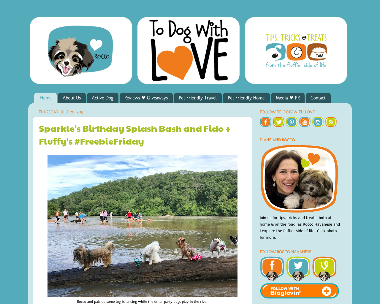 To-Dog-With-Love-Advertising-Reviews-Pricing