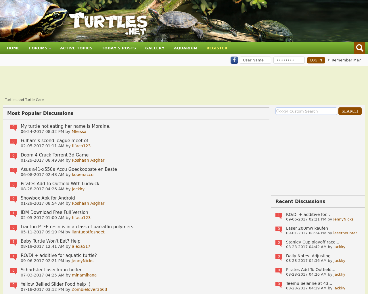 Turtles-And-Turtle-Care-Advertising-Reviews-Pricing
