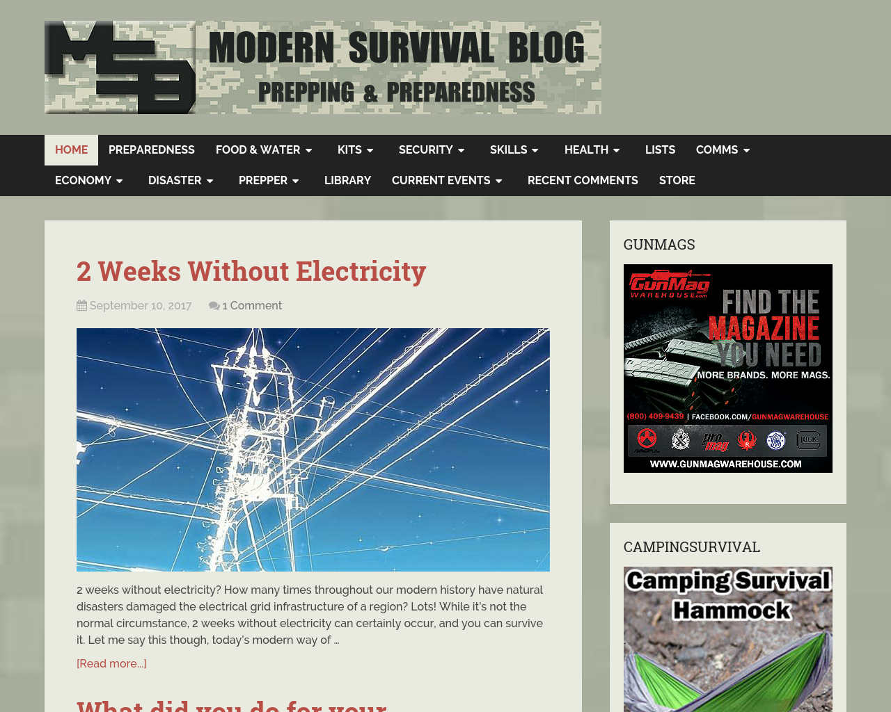 Modern-Survival-Blog-Advertising-Reviews-Pricing