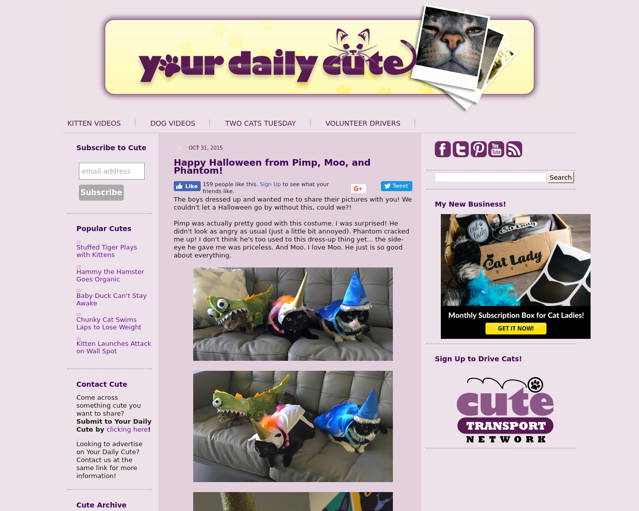 Your-Daily-Cute-Advertising-Reviews-Pricing