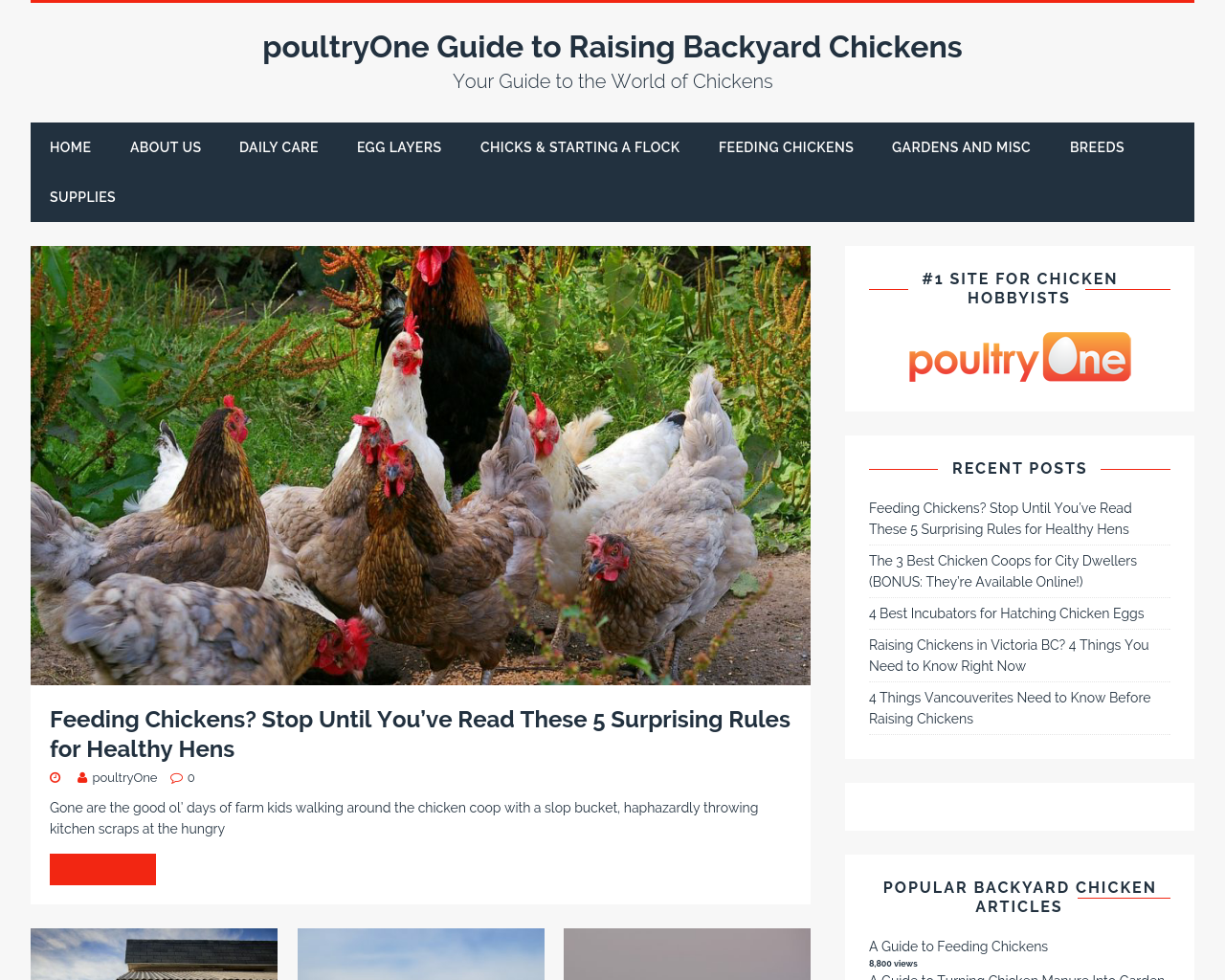 Poultryone-Advertising-Reviews-Pricing